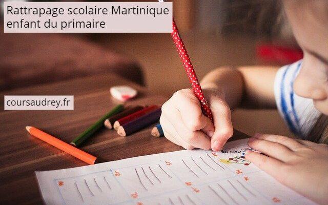 rattrapage scolaire martinique enfant primaire