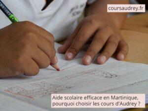 aide scolaire efficace en Martinique pourquoi choisir les cours d'Audrey