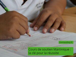 cours de soutien Martinique réussite